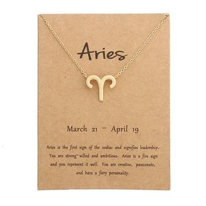 Jewelry - DAINTY 'ARIES' ZODIAC SIGN NECKLACE